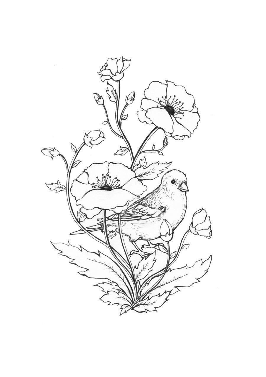 Imagenes De Ramos De Flores Para Dibujar Buscar Con Google