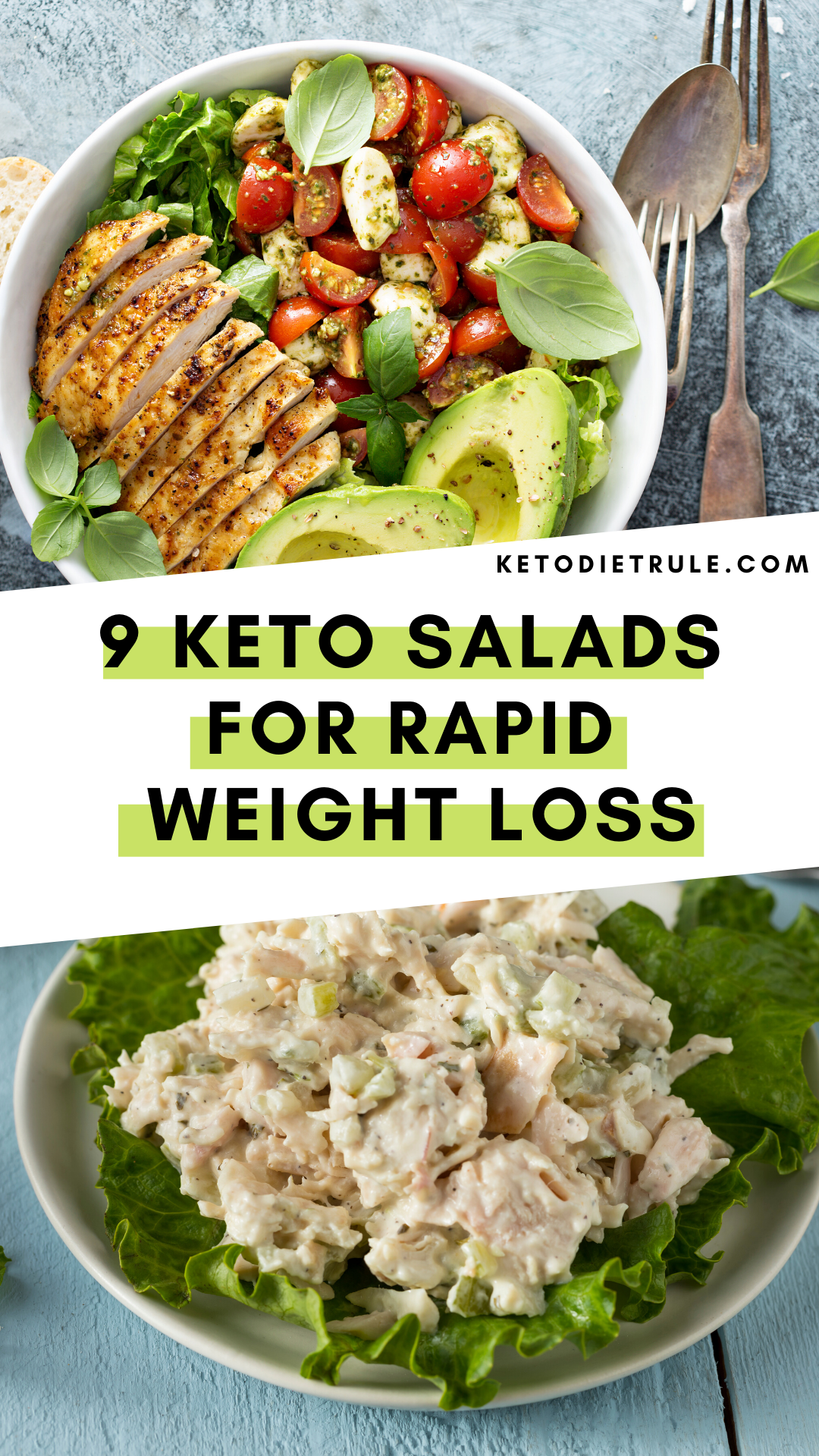 Photo of 9 Best Keto Diet Salad Recipes for Rapid Weight Loss