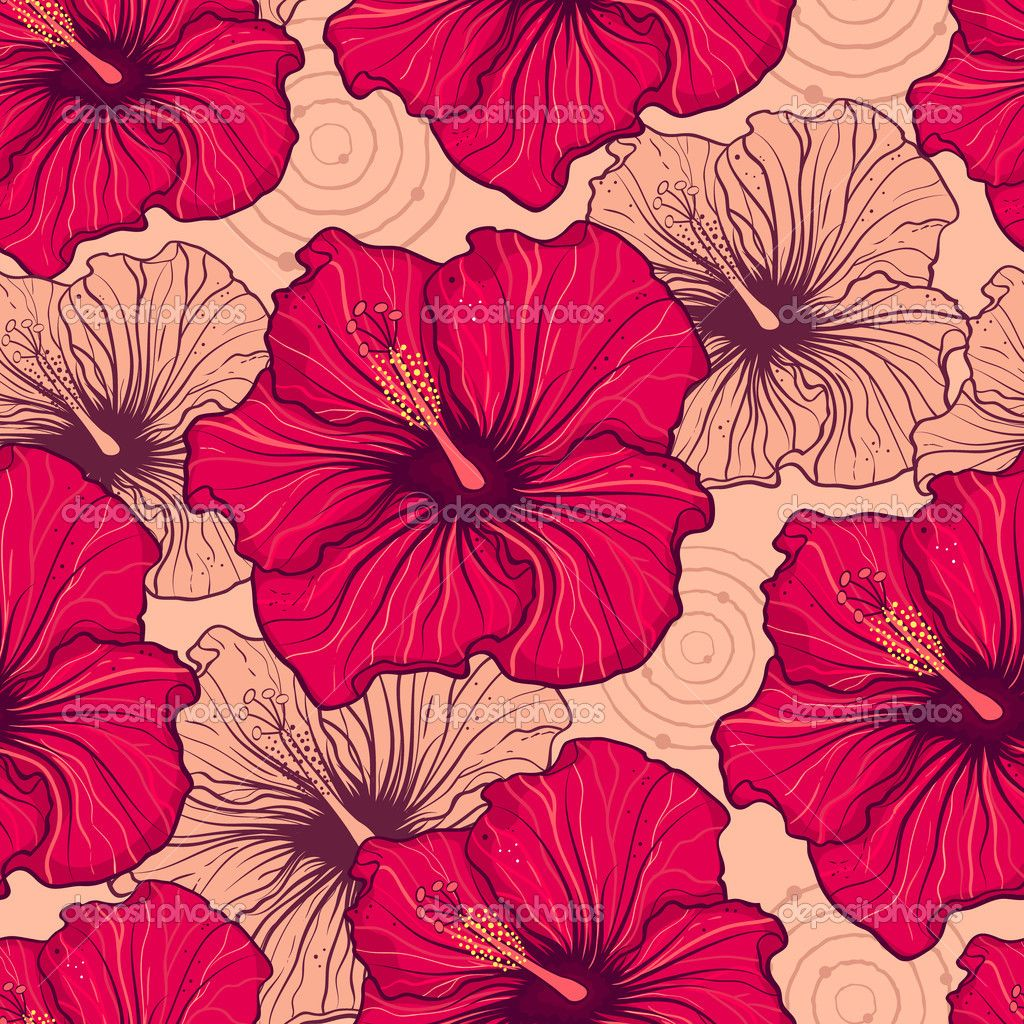 Hibiscus Flowers Google Search Patterns Pinterest Hibiscus