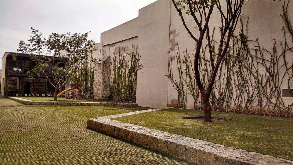 Híbrido naturaleza-arquitectura #Oaxaca #méxico