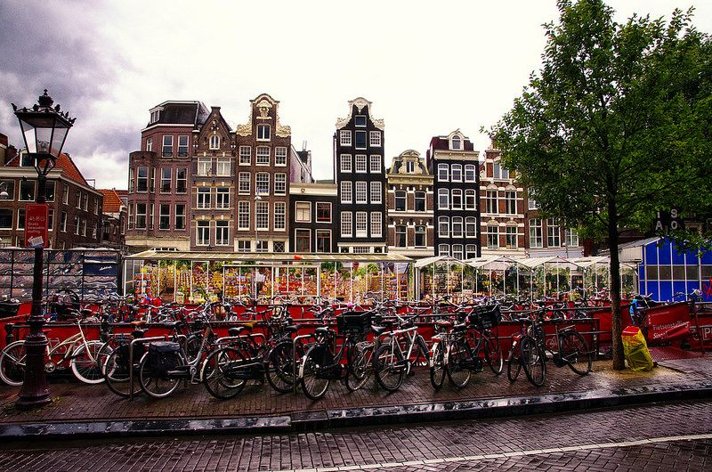 Rainy day in Amsterdam. August 2014