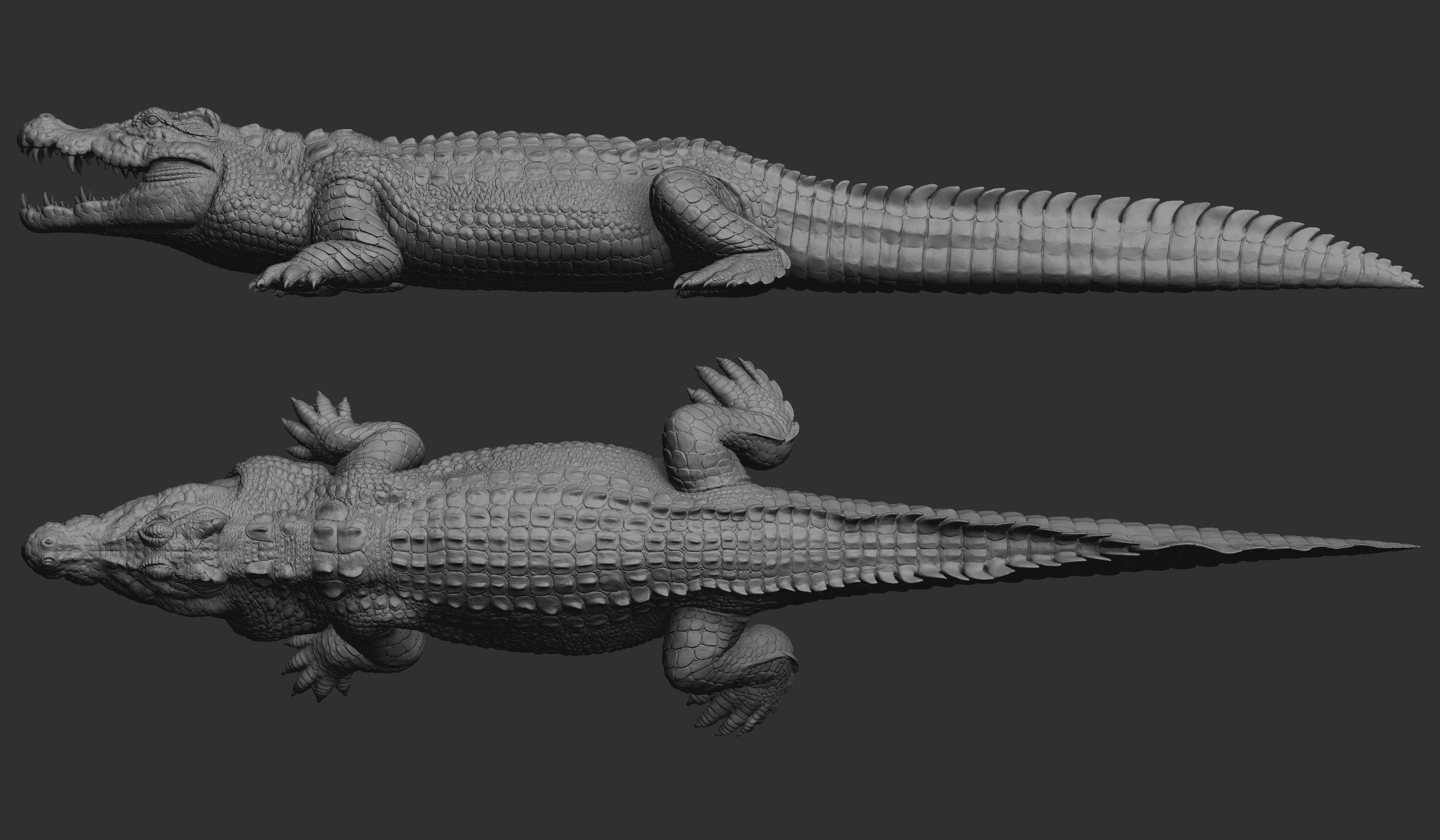 Hight detailed crocodile model 3D model in 2020