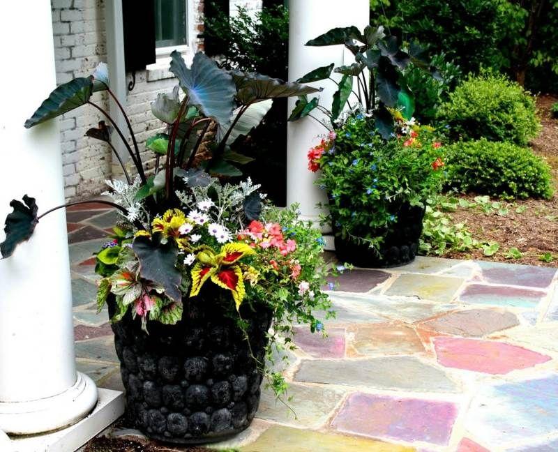 pflanzk bel vor dem hauseingang mit saisonalen blumen wei en margeriten und exotischen. Black Bedroom Furniture Sets. Home Design Ideas
