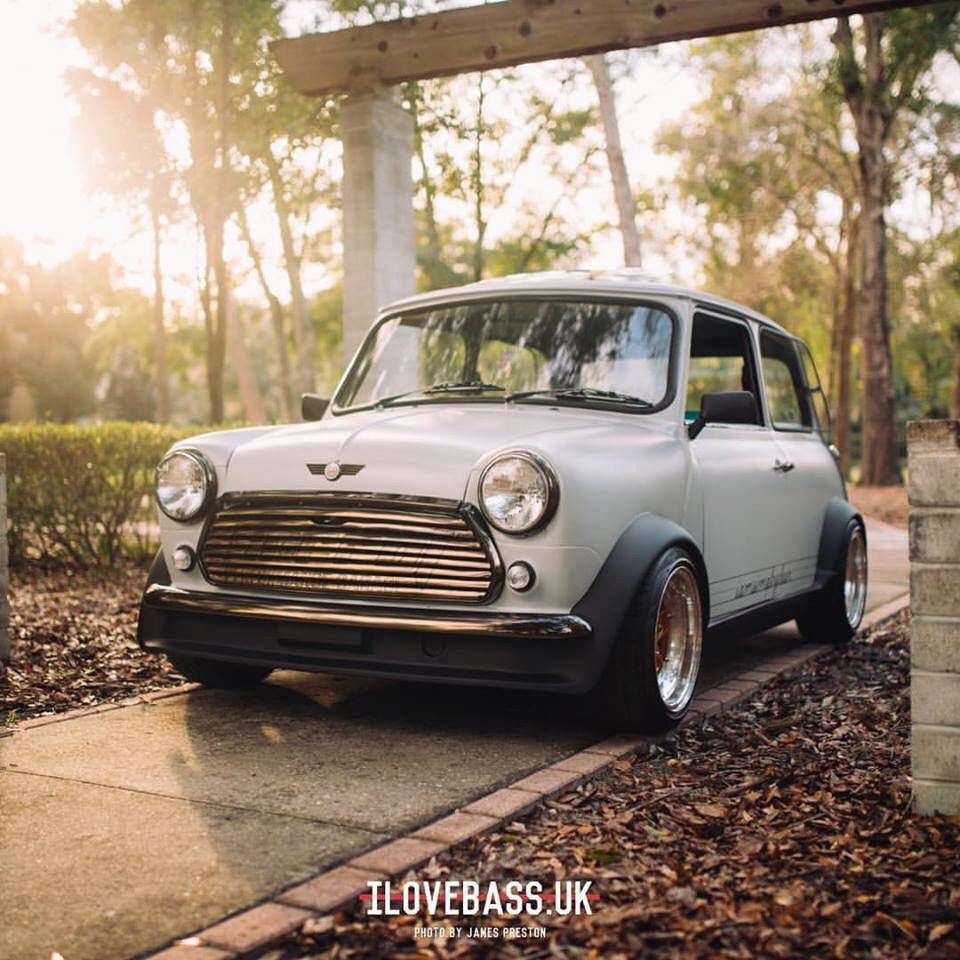 Classic Mini Stance With Gold Retro Wheels Racing Mini