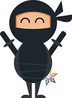 How to find your professional niche: Follow your passions! I became a ninja
