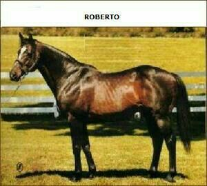 Roberto: sire of Dynaformer, named for Roberto Clemente