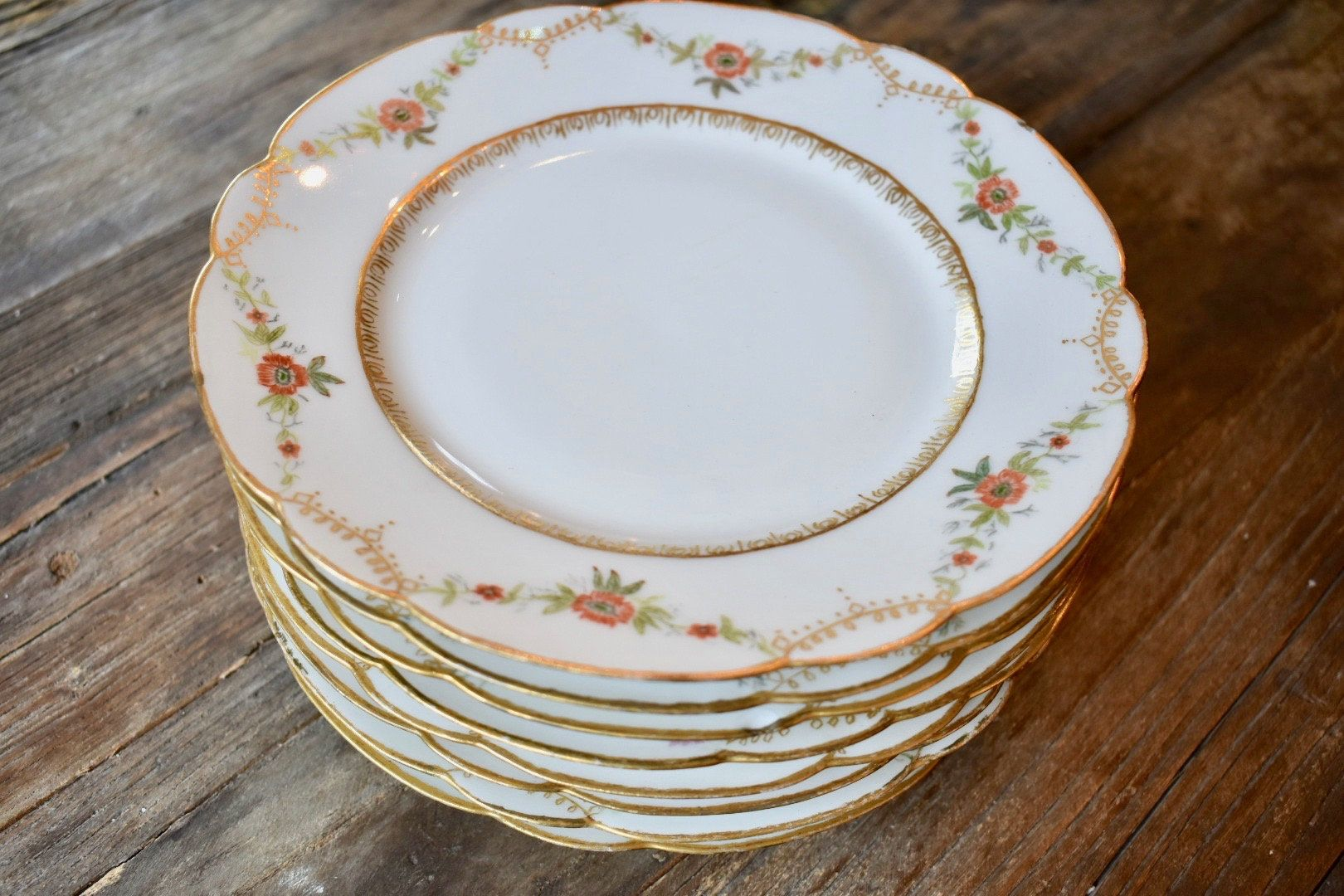 Haviland Limoges China Plates H and C