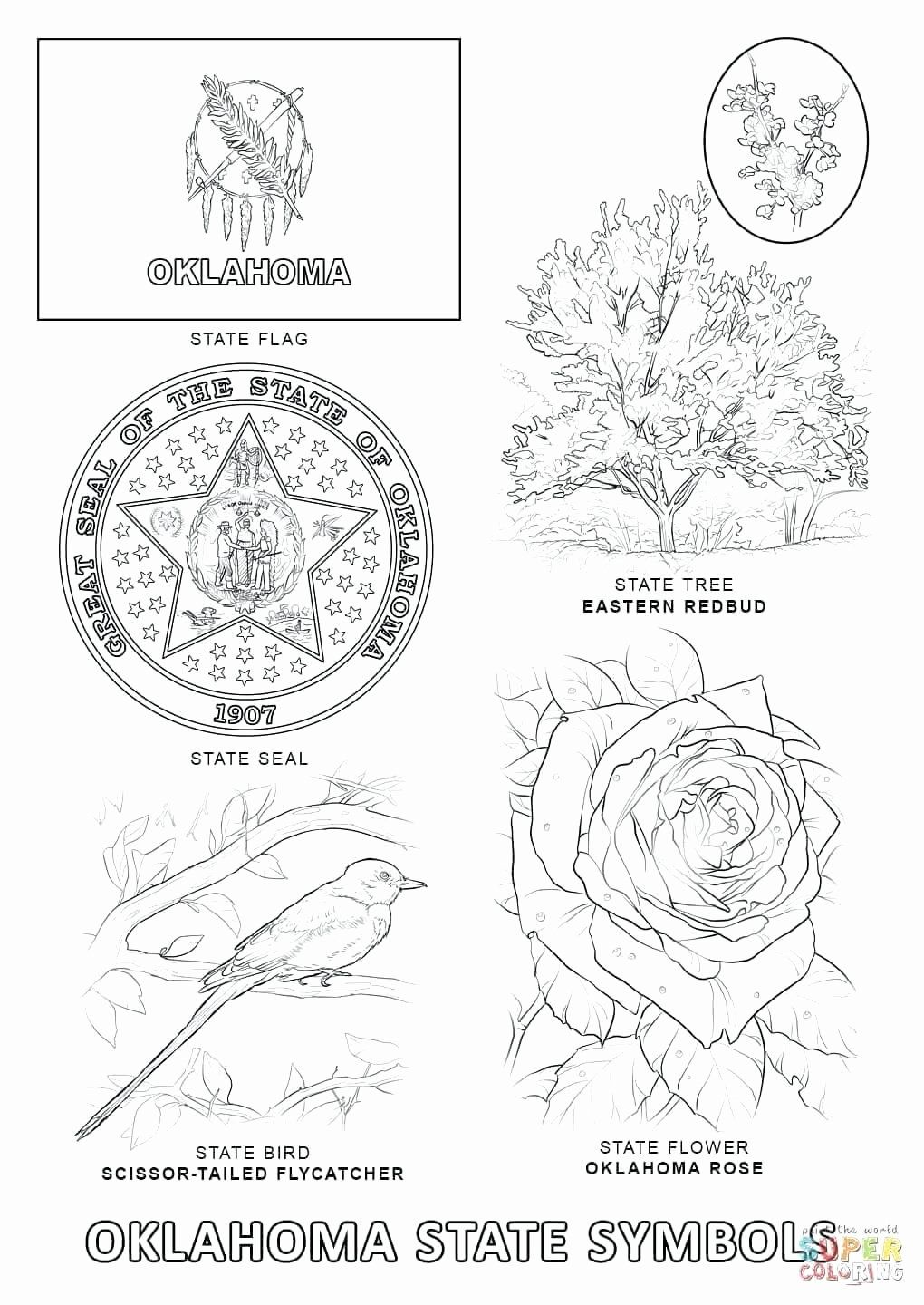 Texas State Bird Coloring Page Awesome California State Symbols