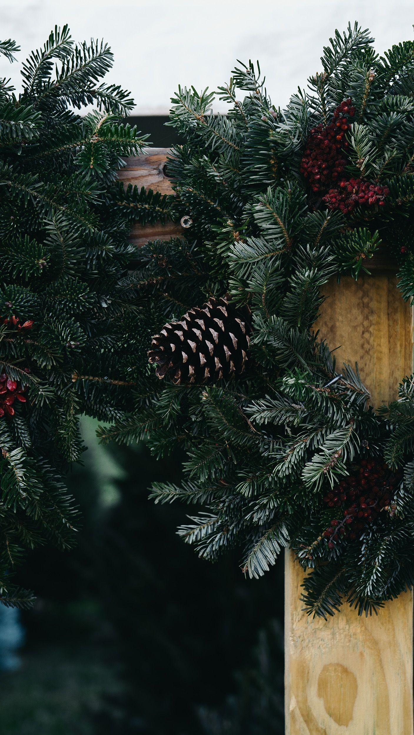 Christmas Is Coming Christmas Tree Farm Neutral Holiday Decor Tree Farms