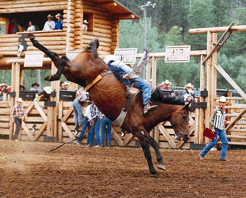 Days Of 76 Rodeo In Deadwood Sd By The The Coolest Arena