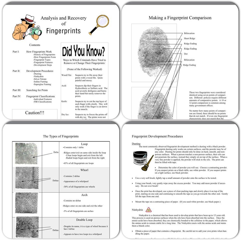 forensic science hair and fiber unit hair forensic science and printable forensic science unit fingerprinting teacherspayteachers com