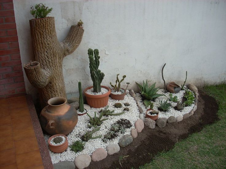 Peque o jardin de cactus buscar con google jardines for Como decorar mi patio