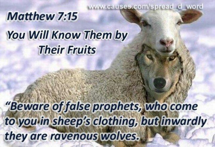 Wolves In Sheep's Clothing! This Is Such A Fitting Verse