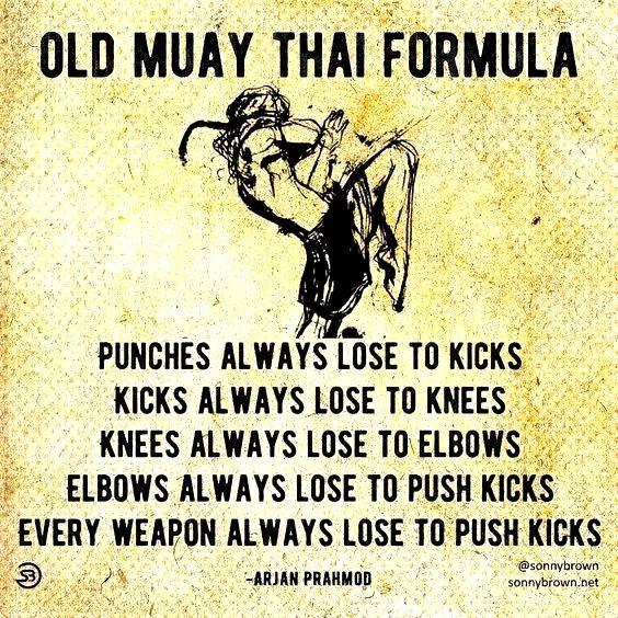 Muay Thai push kick technique