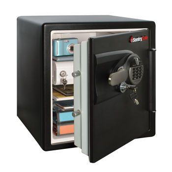 Costco: SentrySafe Biometric DSW3960 Fire Safe   Home Stuff