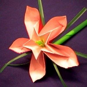 Video Cœur D Etoile Fleurs En Origami Design Origami Pliage Serviette Origami