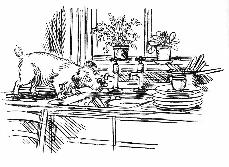 By Fritz Wegner From Woof By Alan Ahlberg Penink Animals
