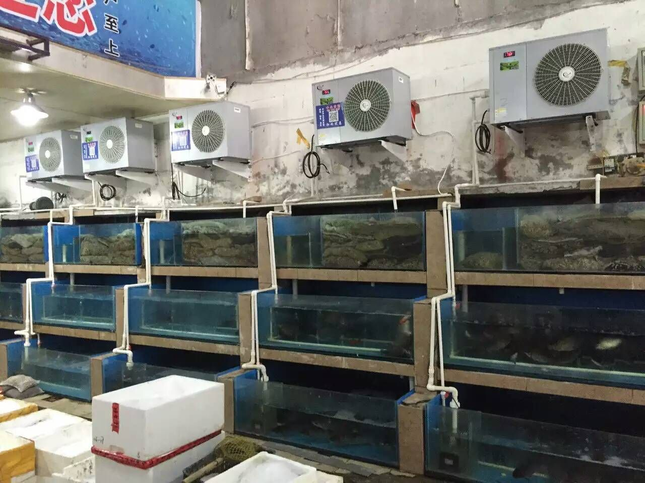 Water Chillers,Aquarium Chillers ,Hydroponic Water