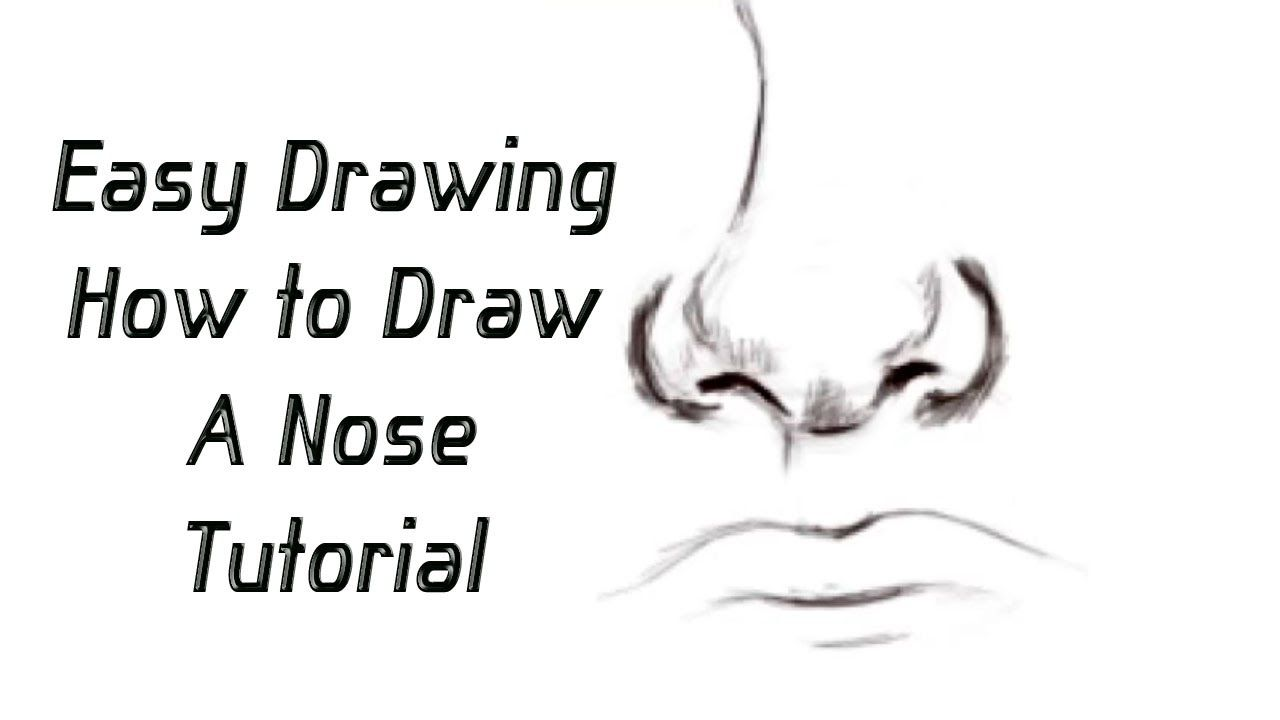 How To Draw A Nose Using Guidelines Nose Drawing Easy Drawings Drawings