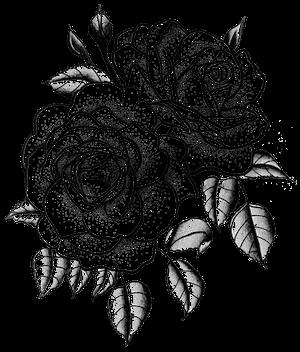 Twin Roses In 2020 Half Sleeve Tattoo Tattoo Set Rose Tattoos