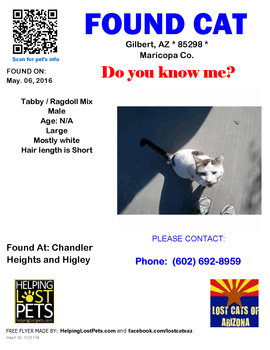 Cody's Lost Cats of Arizona posting by the Good Samaritans that found him on May 6, 2016.