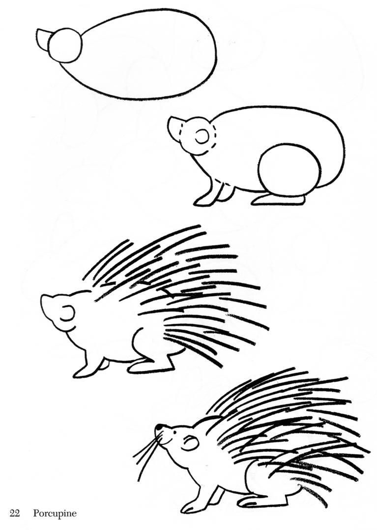 porcupine drawing Google Search Crafts Hedgehogs