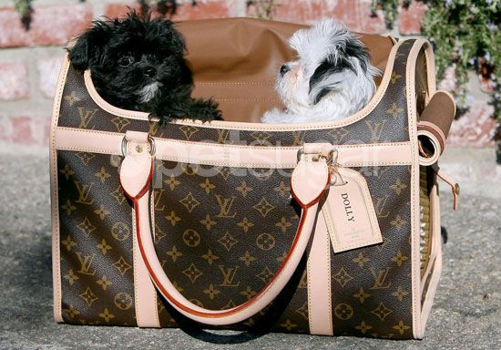 3a95faf4c7a9 My future Louis Vuitton dog carrier.