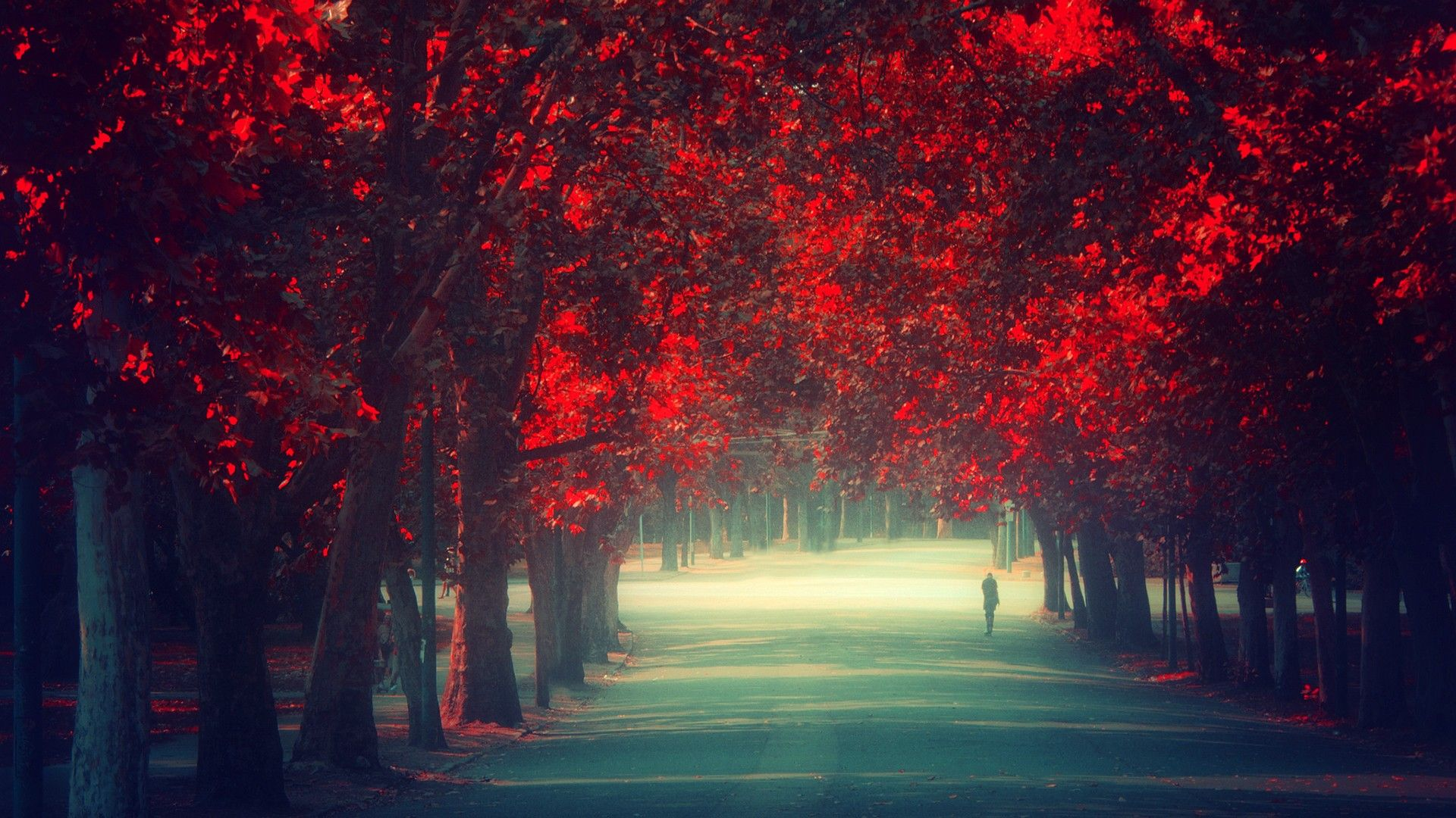 awesome bright autumn scenery - photo #43