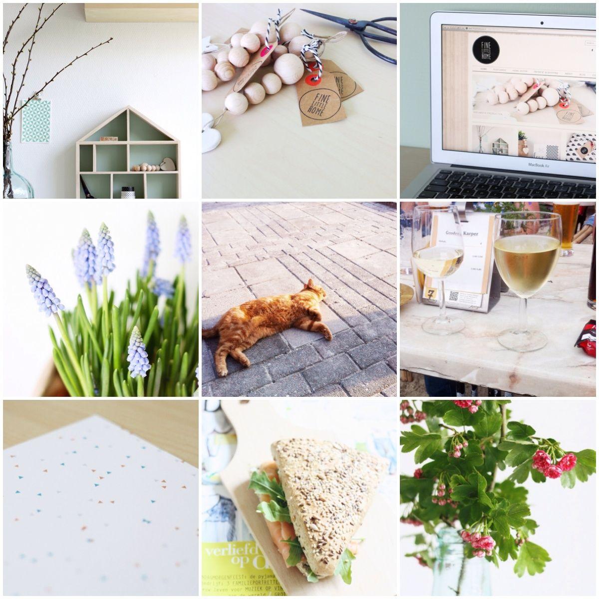 Life in snapshots #67 | Eunoia Studio Blog