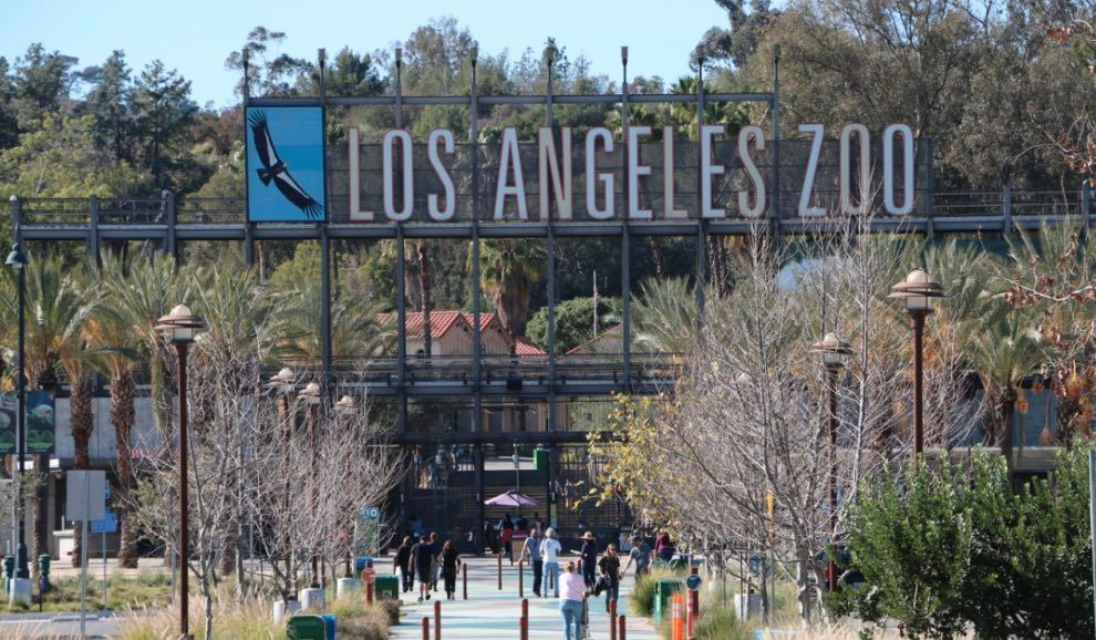 The L A Zoo Will Offer Discount Admission For Pokemon Go Players From July 25 29 Things To Do Today Fun Things To Do Free Things To Do