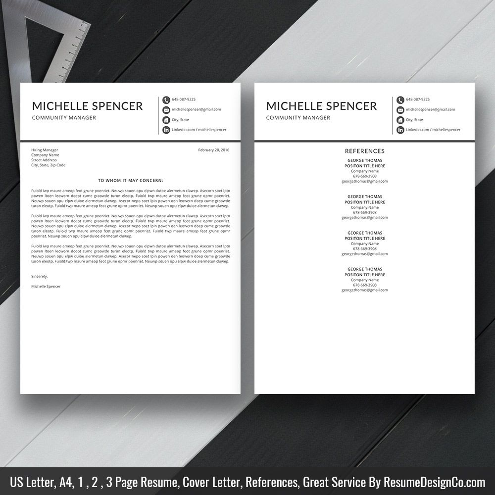 Instant Download The Michelle Resume  Icon Files Professional