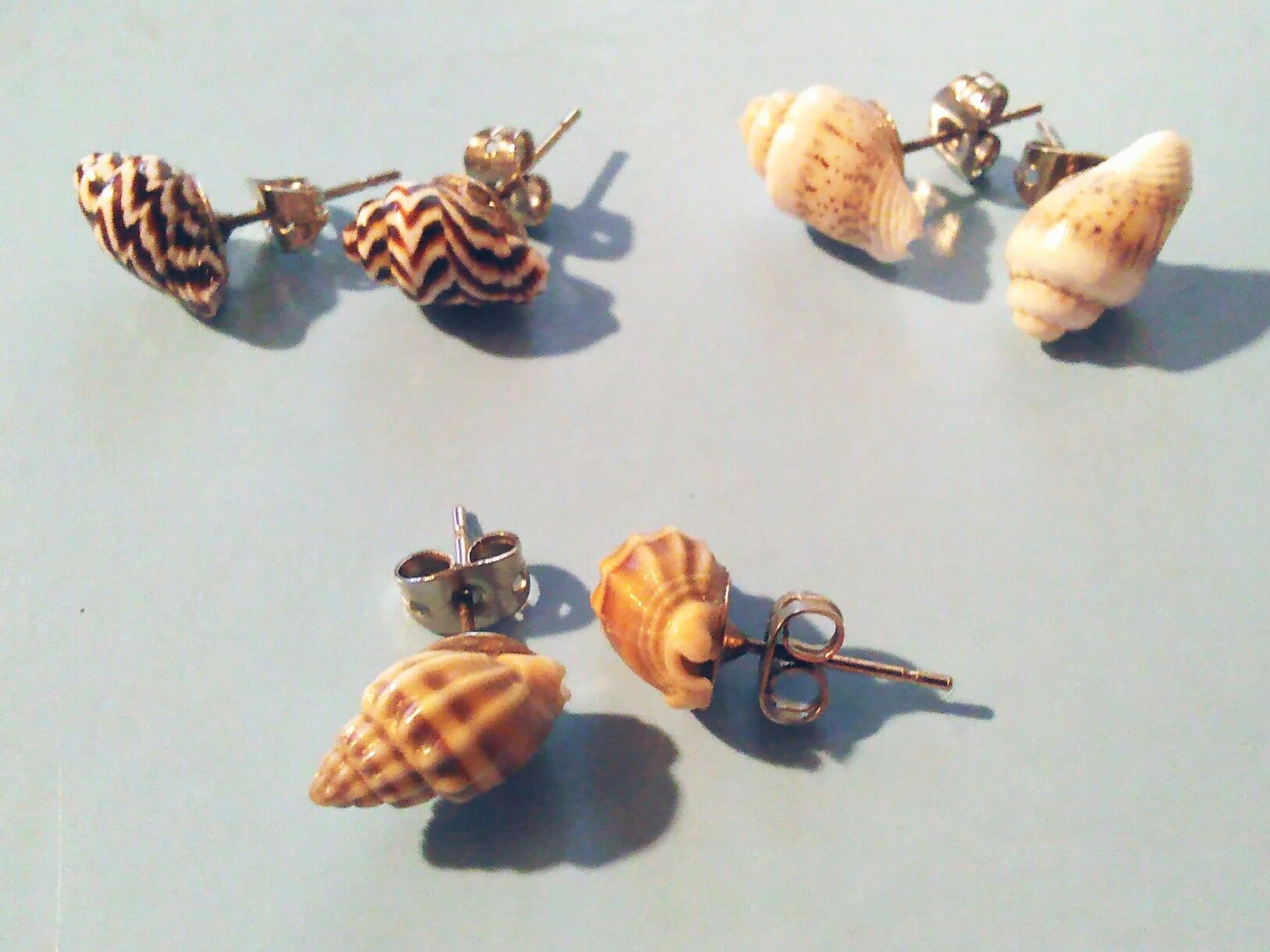 pin earrings cast stud water seashell