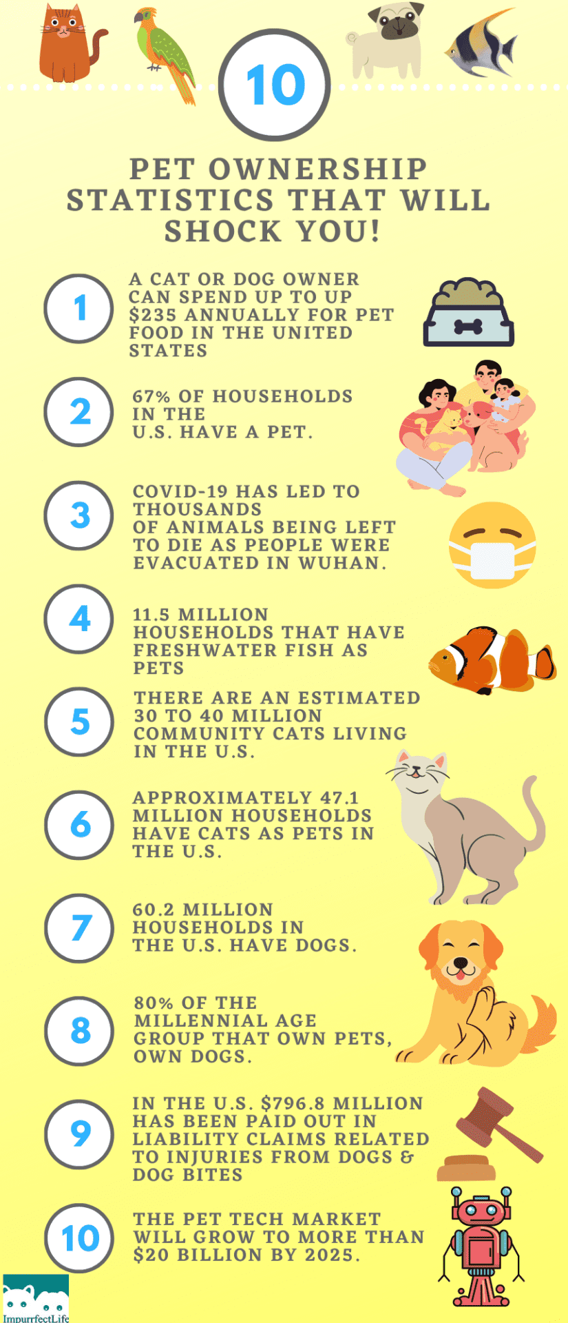 10 Pet Ownership Statistics That Will Shock You It S A Brand New Decade And I Thought It Would Be Interesting To Share A Few In 2020 Pet Ownership Pets Helpful Hints