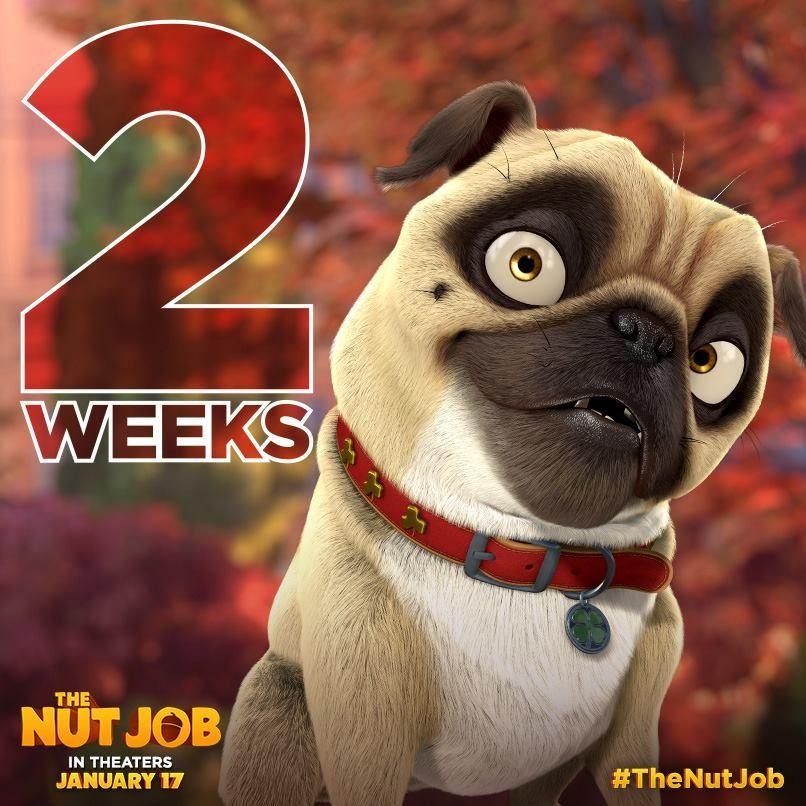 Precious From The Nut Job The Nut Job Pugs Job