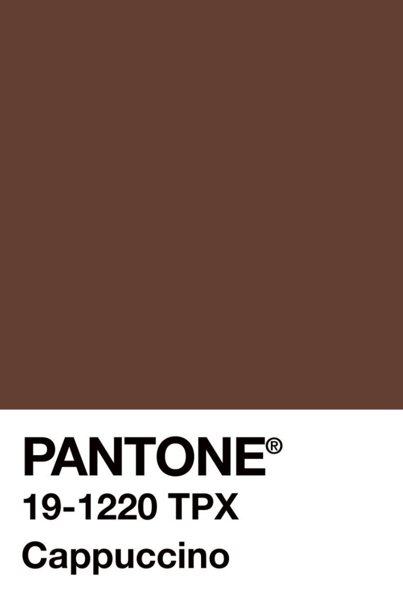 Cappuccino In 2019 Pantone Brown Pantone Pantone Color