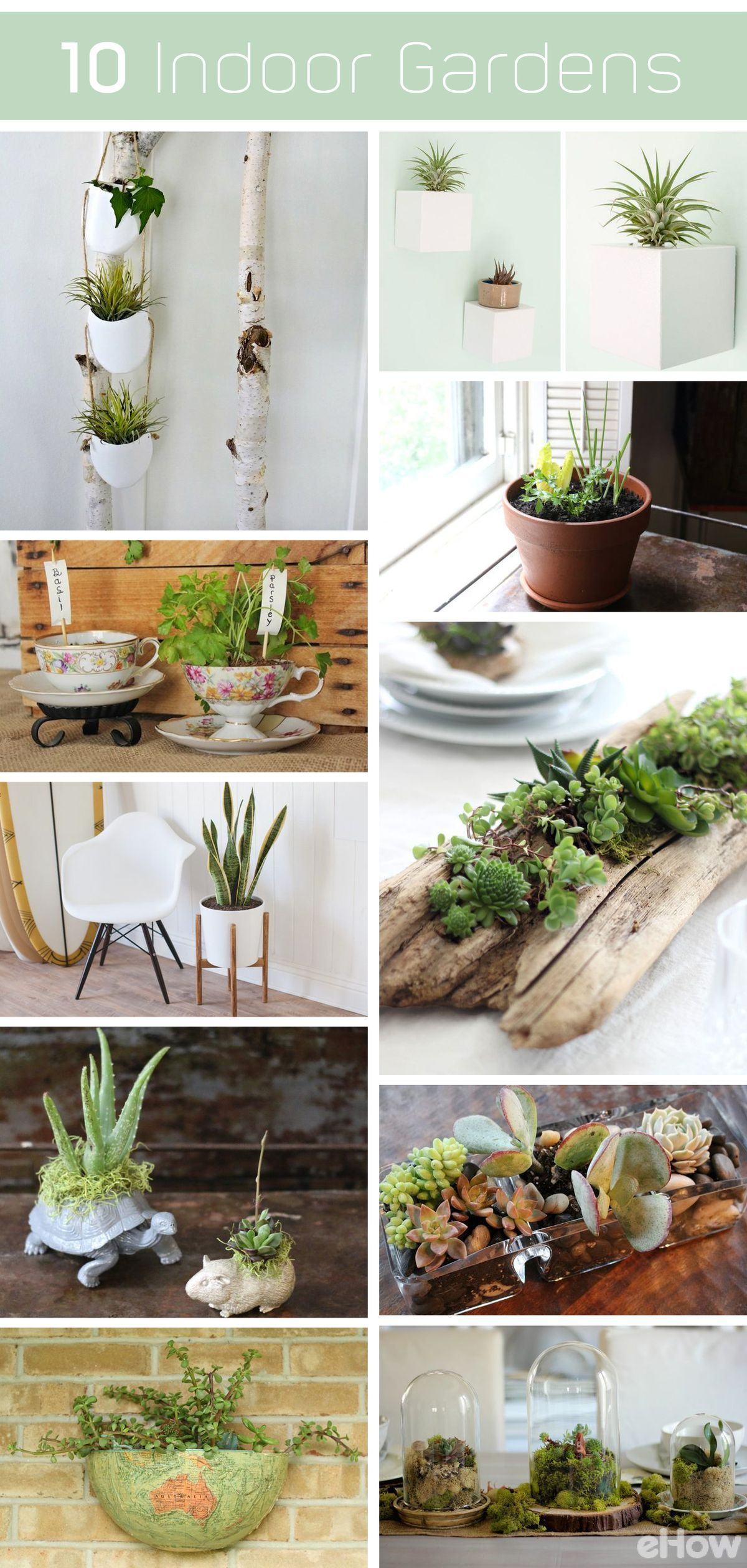 10 DIY Indoor Gardens for the Urban Gardener Small