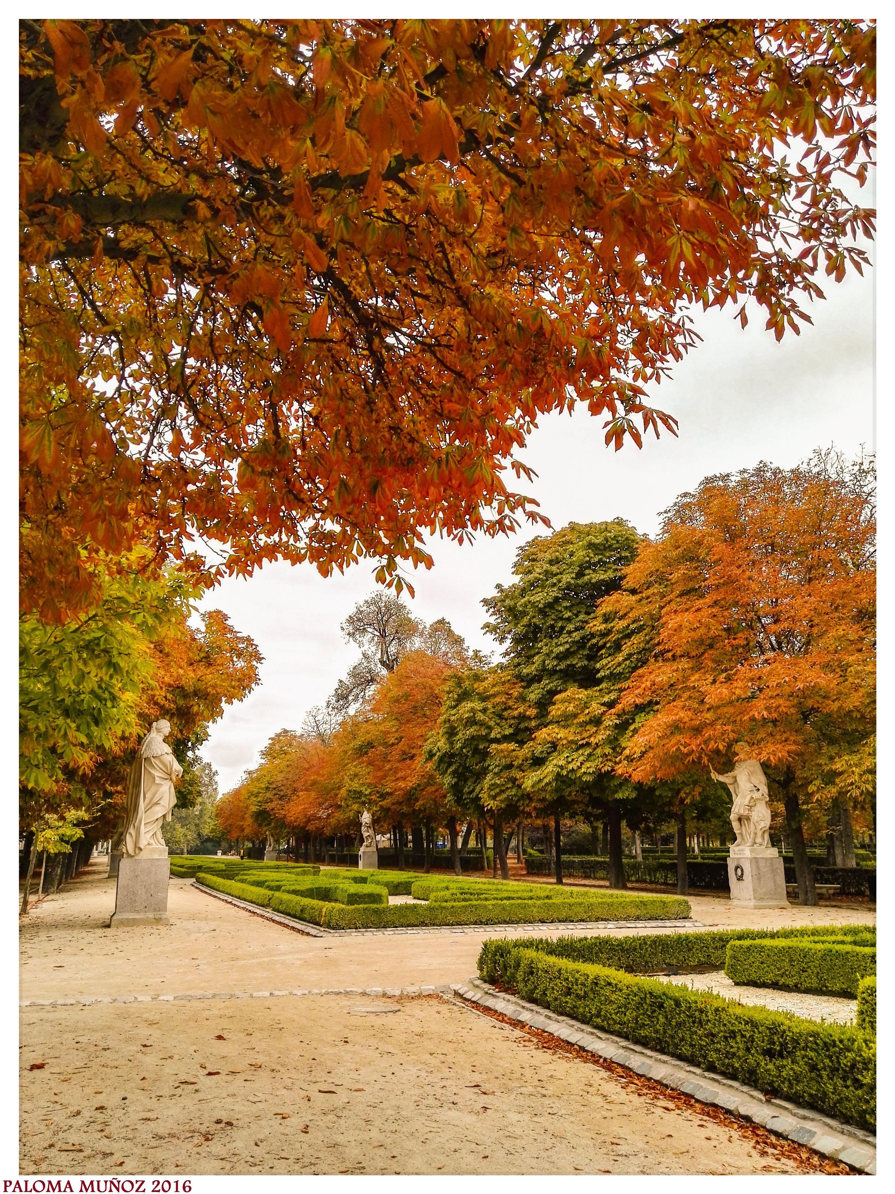 Paseo de las Estatuas. Jardines del Retiro. Madrid. Colores de otoño ...