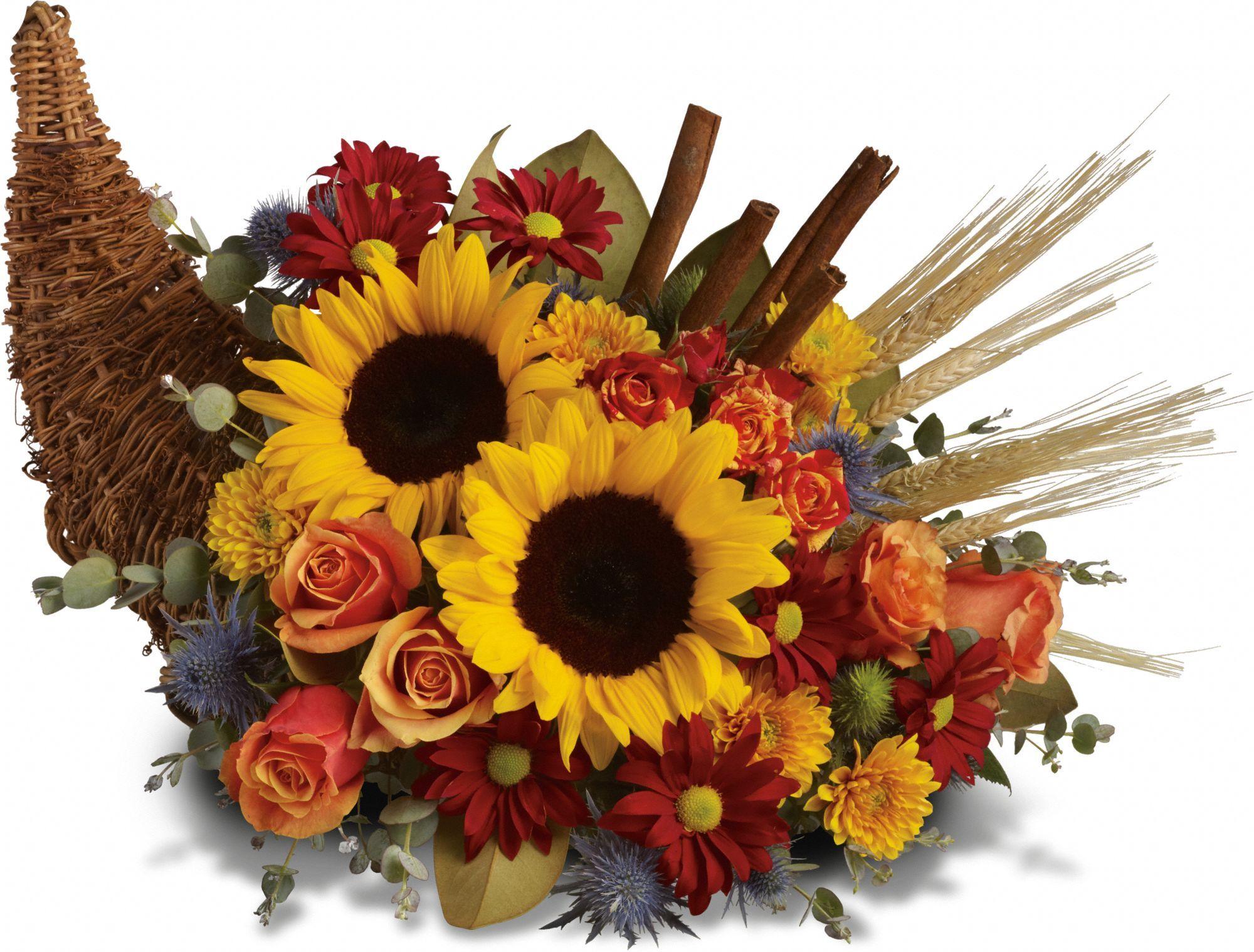Classic cornucopia thanksgiving flowers fall flower