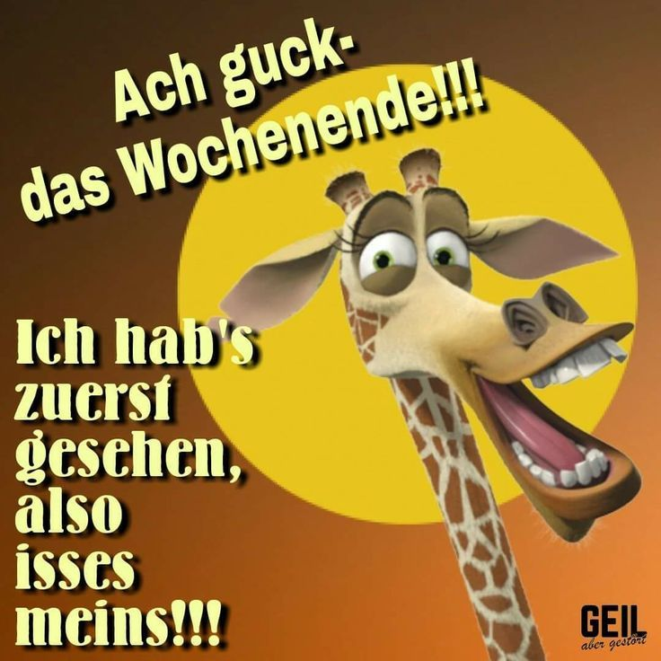 Funny sayings - Dajana Schulz | Wochenende lustig, Lustige