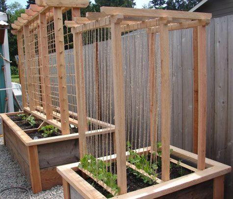 veggie box trellis