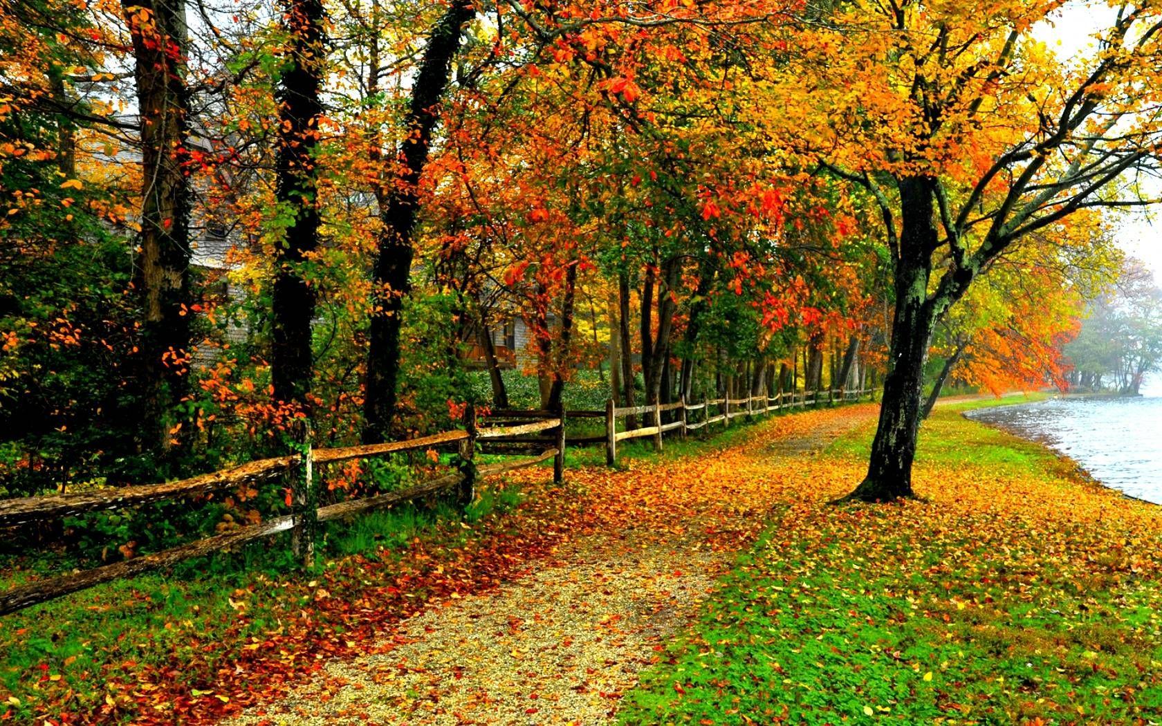 Fall Colors Wallpaper Backgrounds Wallpaper Cave Landscape Background Autumn Landscape Autumn Scenery