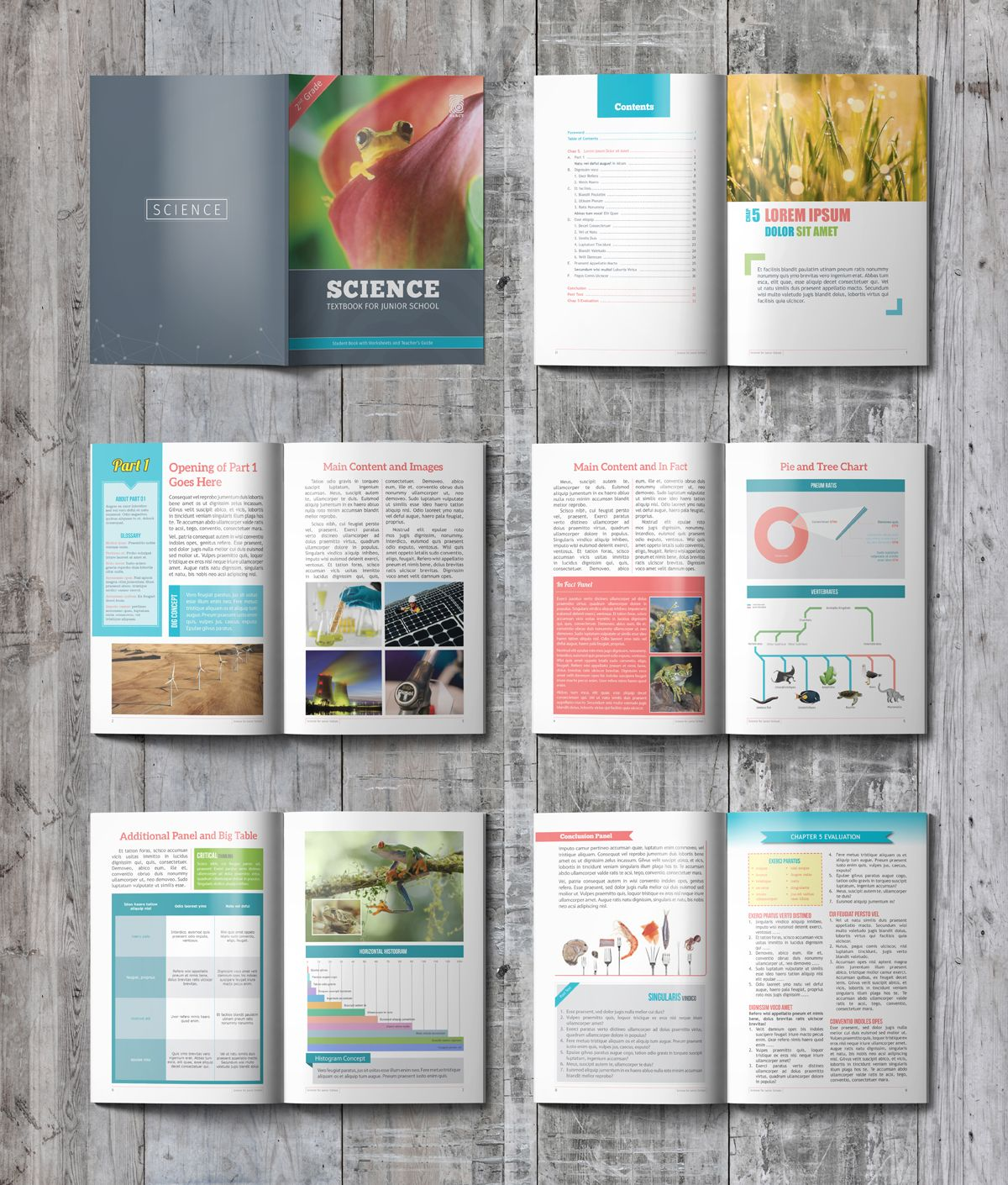 Carefully Handcrafted Textbook Template Created With Adobe Indesign Template Available With Some St Book Design Layout Book And Magazine Design Booklet Design