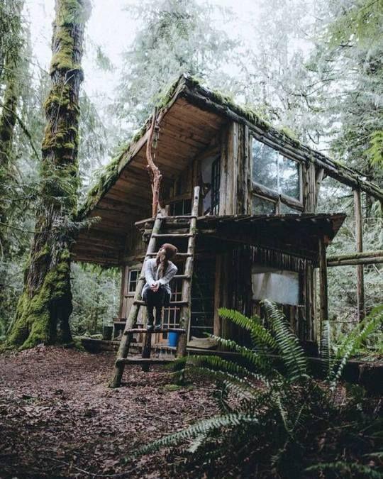 Etonnant Forest Cabin Near Seattle, Washington, USA Justin D Kauffman I