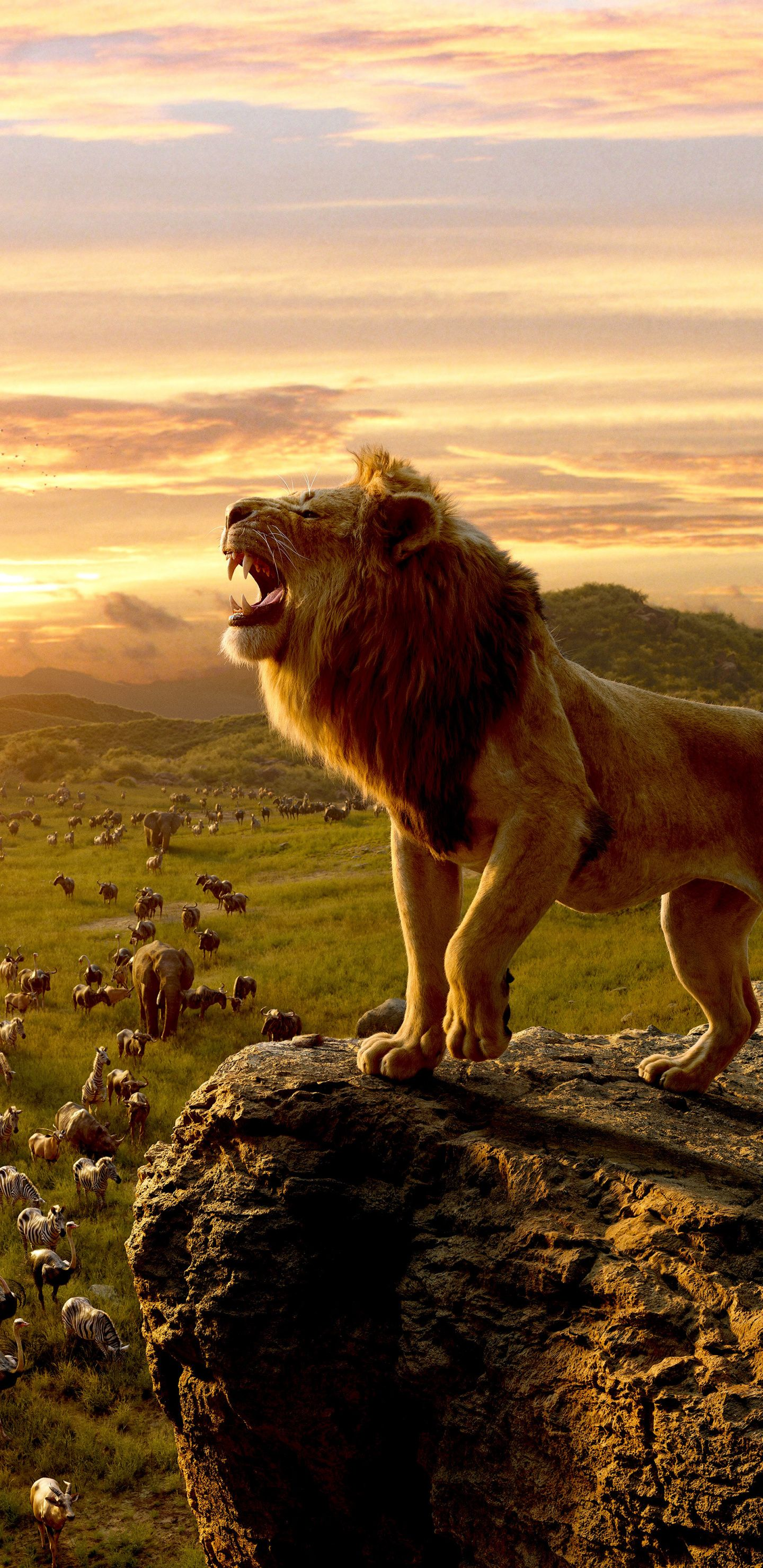 1440x2960 The Lion King King Of Jungle Movie 2019 Simba