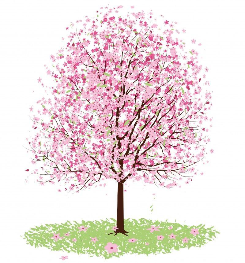 無料で使える桜のベクターイラスト素材まとめaiepssvg Free