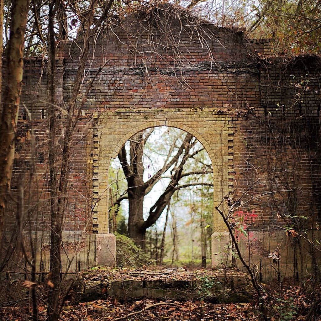 Ruins Of The Old Rhymes School In Rural Richland Parish