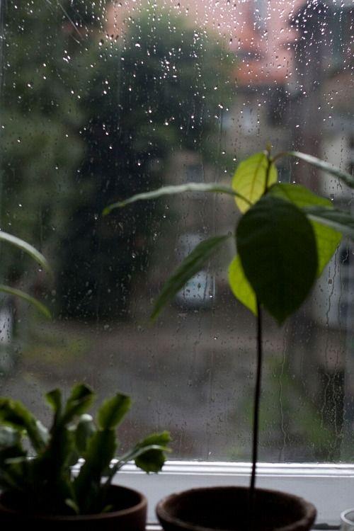 day, lonely, rain, romantic, sad