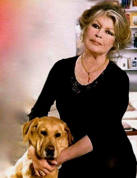 Photo de Brigitte Bardot (en 2003, à La Madrague) choisie par Laurent pour illustrer ses vœux ci-dessous.