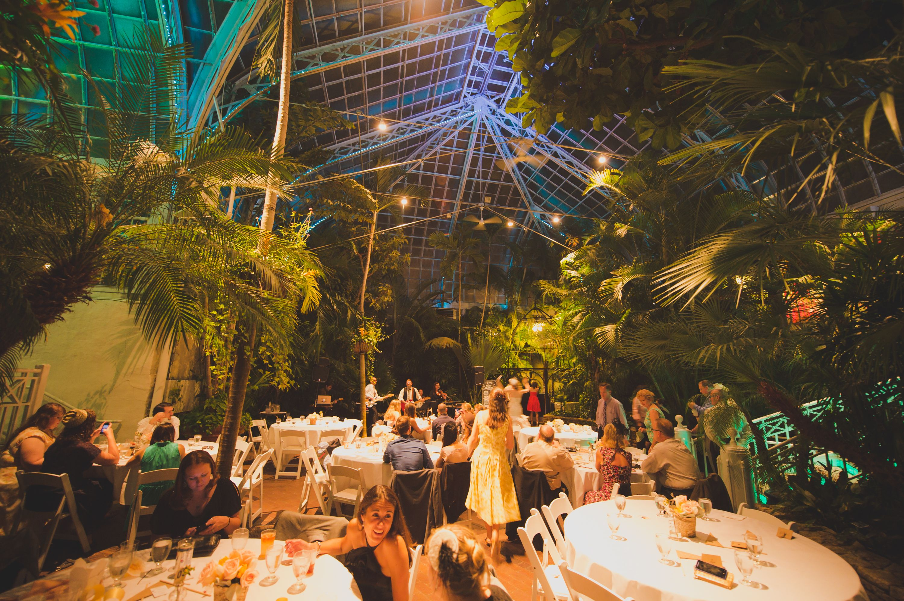 Wedding In The Palm House Franklin Park Conservatory