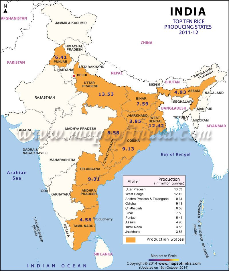 Map of top 10 rice producing states of india projects to try find map of top 10 potato producing states in india map showing potato producing states along with production amount gumiabroncs Choice Image